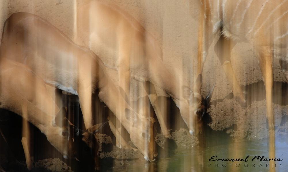 Contemporary photography